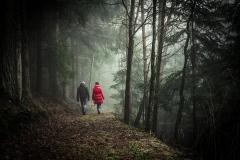 walking-1149747_1920